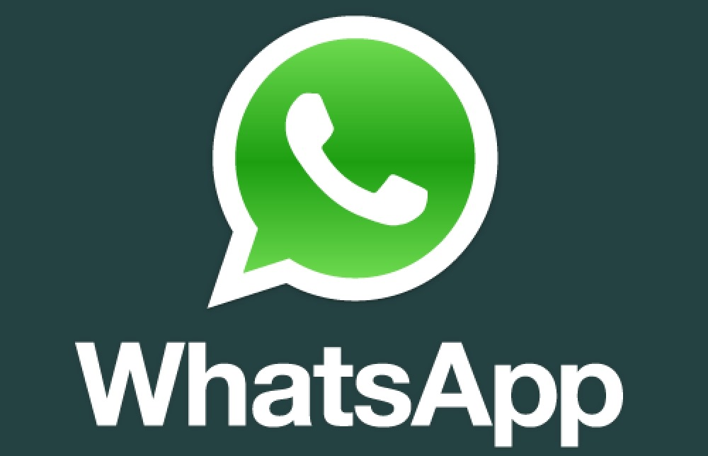 What s up i mean whatsapp a rose is a rose is a rose