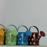 Watering Cans Planters