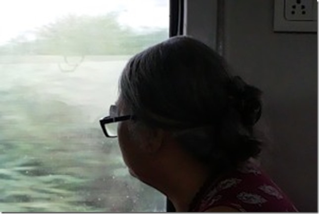 Train-300x201