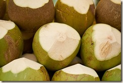 india-coconut-3221935_640