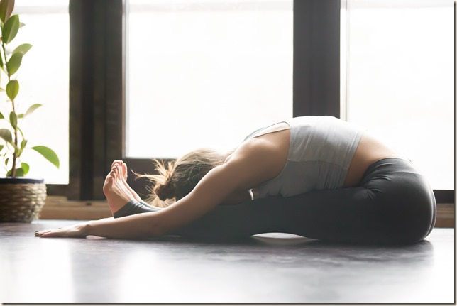 Paschimottanasana (Seated Forward Bend Pose)